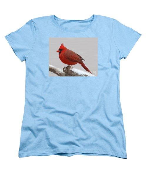 Downy Winter Male Women's T-Shirt (Standard Cut)