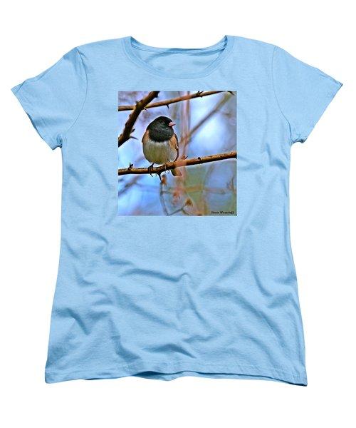 Dreamworld Women's T-Shirt (Standard Cut) by Steve Warnstaff