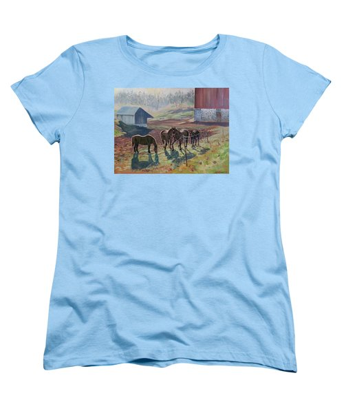 Early December At The Farm Women's T-Shirt (Standard Cut) by David Gilmore