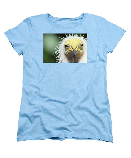 Egyptian Vulture Women's T-Shirt (Standard Cut) by David Stasiak