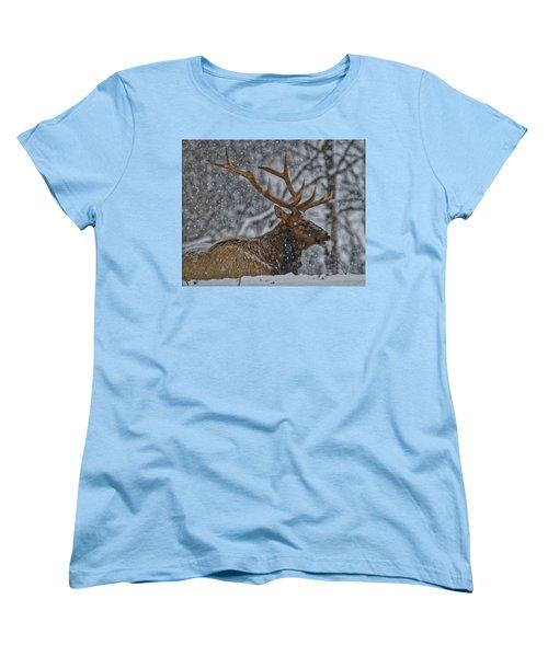 Elk Enjoying The Snow Women's T-Shirt (Standard Cut) by Michael Peychich