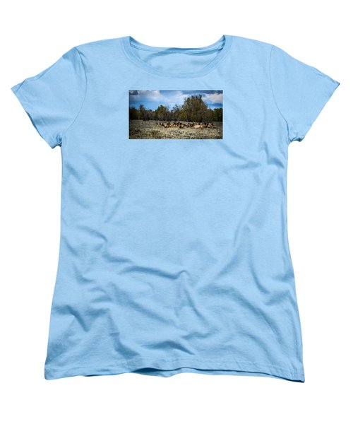 Women's T-Shirt (Standard Cut) featuring the photograph Elk Family by Sandy Molinaro