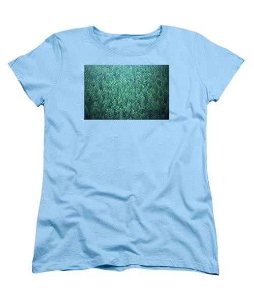 Women's T-Shirt (Standard Cut) featuring the photograph Evergreen by Laurie Stewart