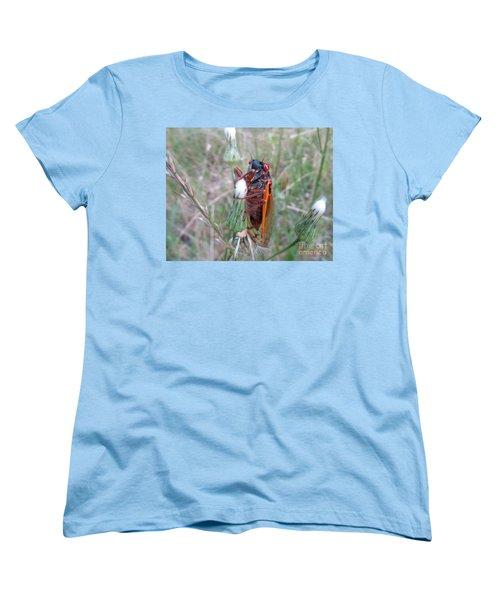 Every Thirteen Years  Women's T-Shirt (Standard Cut) by Donna Brown
