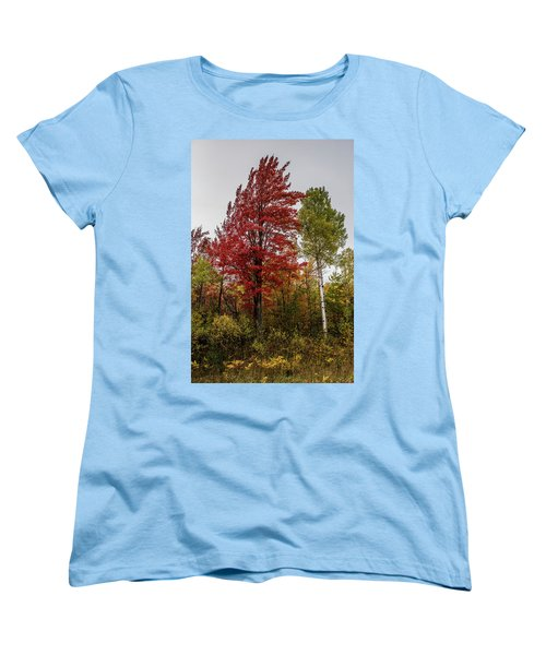 Women's T-Shirt (Standard Cut) featuring the photograph Fall Maple by Paul Freidlund