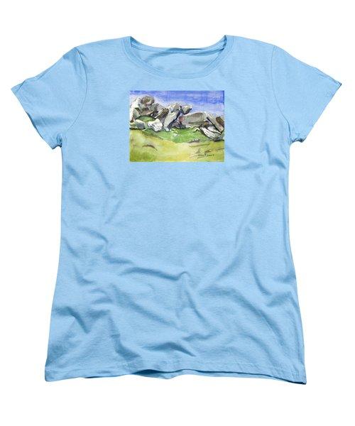 Fallen Stones Women's T-Shirt (Standard Cut)