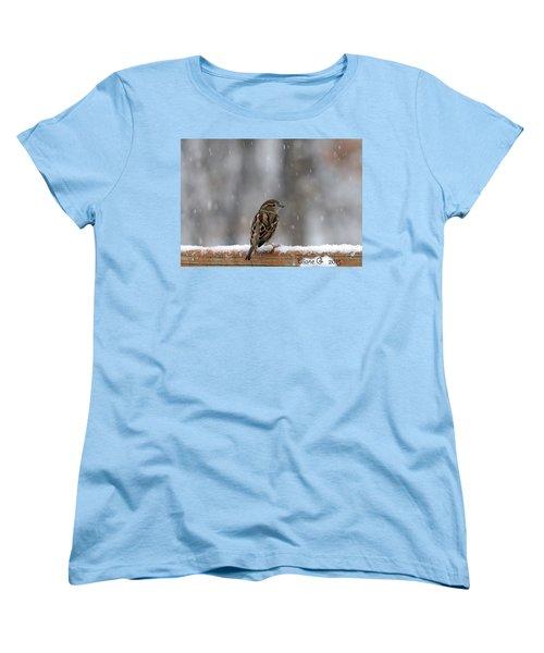 Female Sparrow In Snow Women's T-Shirt (Standard Cut) by Diane Giurco