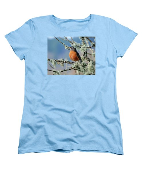 First Robin Of The Spring Women's T-Shirt (Standard Cut) by Greg Sigrist