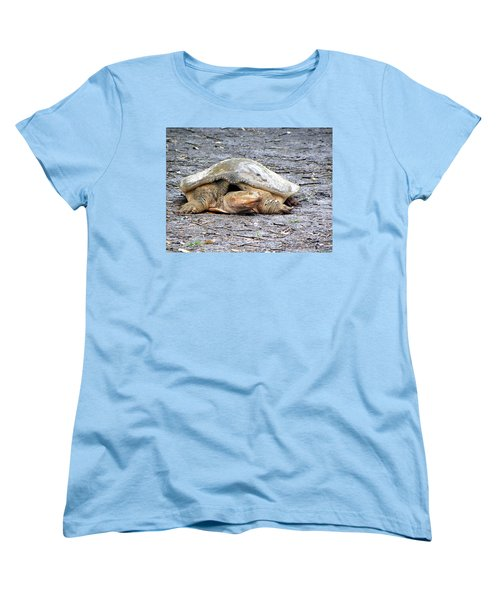 Women's T-Shirt (Standard Cut) featuring the photograph Florida Softshell Turtle 001 by Chris Mercer