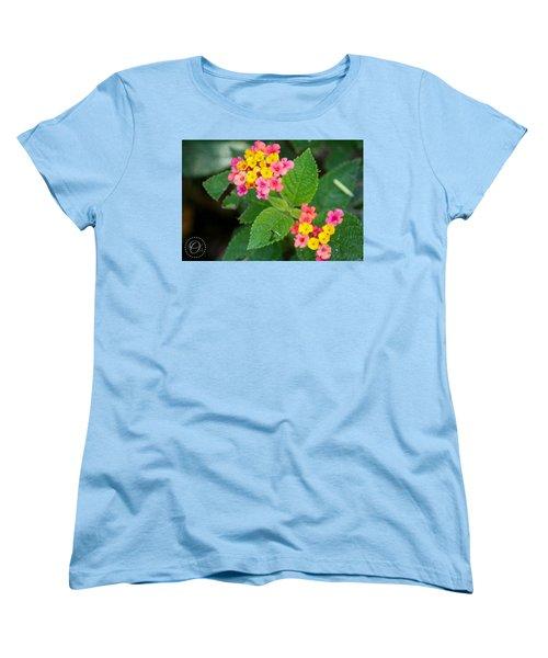 Flower Bloom Women's T-Shirt (Standard Cut) by Shelley Overton