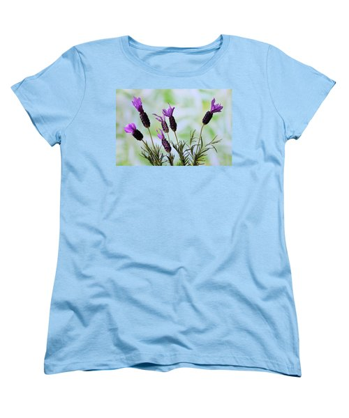 French Lavender Women's T-Shirt (Standard Cut) by Terence Davis