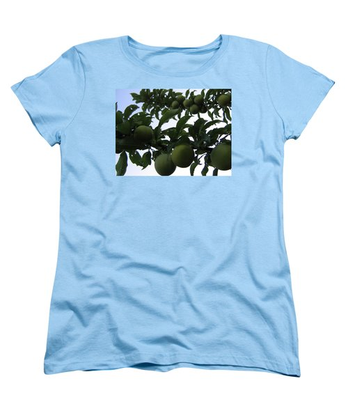 Women's T-Shirt (Standard Cut) featuring the photograph Fruit And Sky_raindrops by Barbara Yearty
