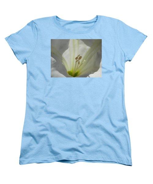 Good Afternoon Arizona Women's T-Shirt (Standard Cut)