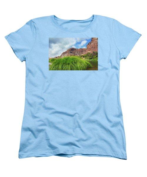 Grass Along John Day River In Central Oregon Women's T-Shirt (Standard Fit)