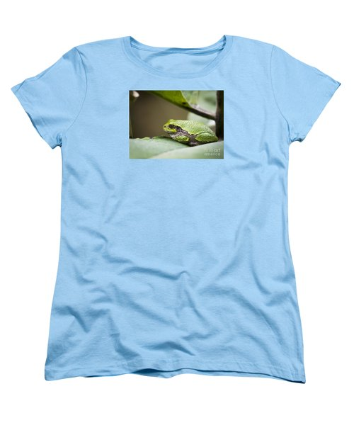 Women's T-Shirt (Standard Cut) featuring the photograph Gray Tree Frog - North American Tree Frog by Ricky L Jones