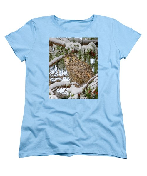 Great Horned Owl In Snow Women's T-Shirt (Standard Cut) by Jack Bell