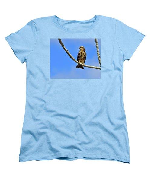 Hook Women's T-Shirt (Standard Cut) by Tony Beck