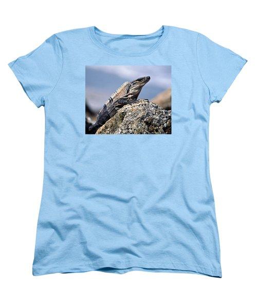 Iguana Women's T-Shirt (Standard Cut) by Sally Weigand