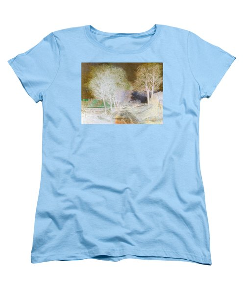 Inv Blend 4 Sisley Women's T-Shirt (Standard Cut) by David Bridburg