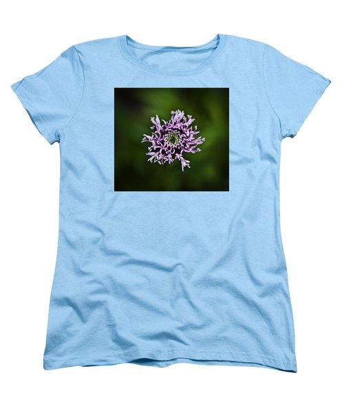 Isolated Flower Women's T-Shirt (Standard Cut) by Jason Moynihan