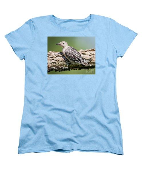 Juvenile Red-bellied Woodpecker Women's T-Shirt (Standard Cut) by Ricky L Jones