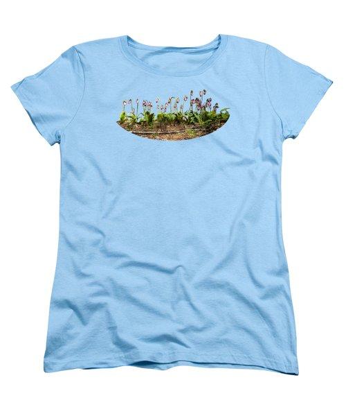 Lady Slippers Women's T-Shirt (Standard Cut) by Daniel Hebard