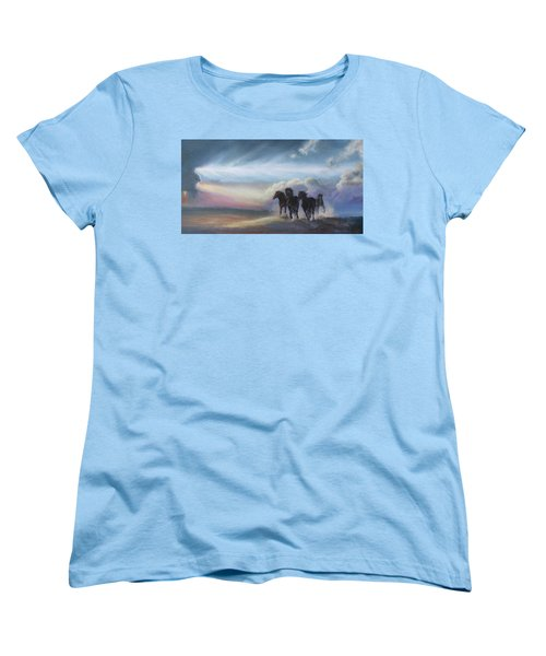 Last Run Of The Day Women's T-Shirt (Standard Cut) by Karen Kennedy Chatham