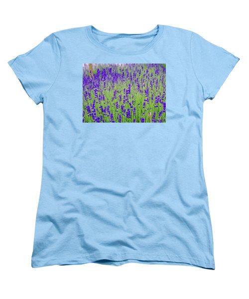 Lavender Women's T-Shirt (Standard Cut) by Rainer Kersten