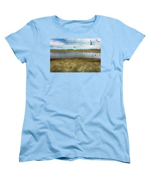 Lb Seagull Pond Women's T-Shirt (Standard Cut) by Joseph Hollingsworth