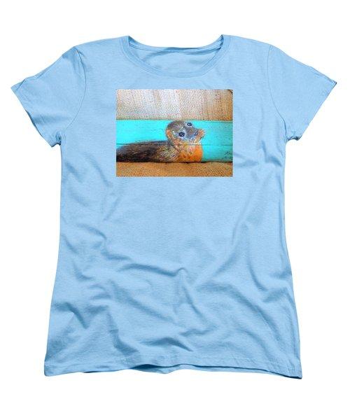 Little Seal Women's T-Shirt (Standard Cut) by Ann Michelle Swadener