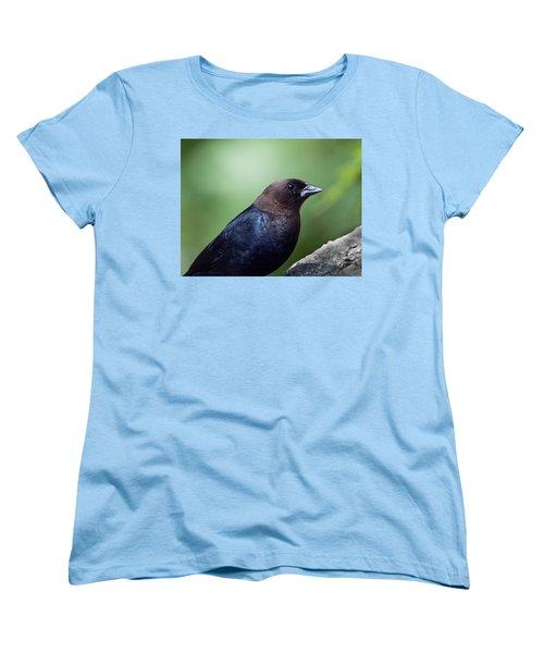 Male Cowbird Women's T-Shirt (Standard Cut) by Diane Giurco
