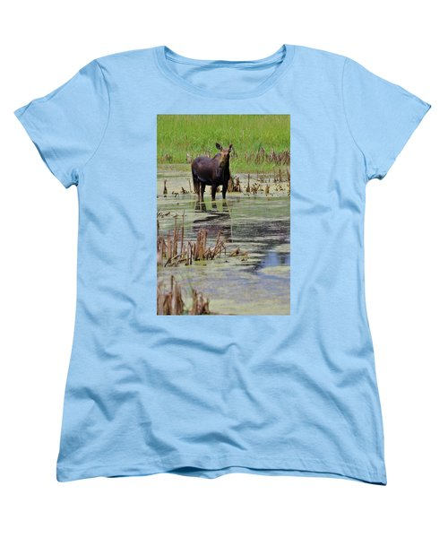 Moose Enjoying Dinner Women's T-Shirt (Standard Cut) by Matt Helm