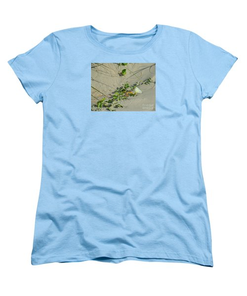 Women's T-Shirt (Standard Cut) featuring the photograph Morning Glory At The Beach by Mim White