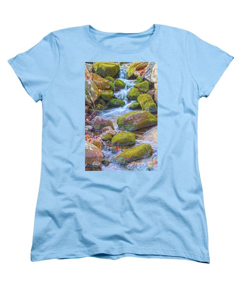 Mossy Stepping Stones Women's T-Shirt (Standard Cut) by Angelo Marcialis