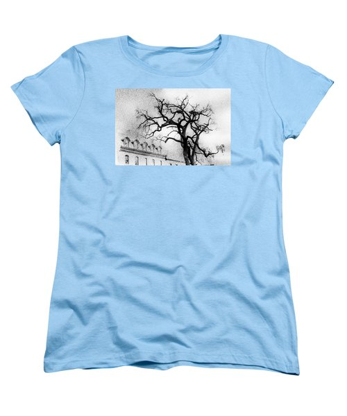 Naked Tree Women's T-Shirt (Standard Cut) by Celso Bressan