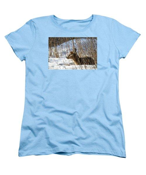 Napping Fawn Women's T-Shirt (Standard Cut) by Brook Burling