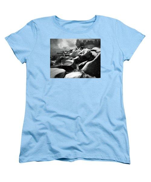 Nasty Weather Women's T-Shirt (Standard Cut) by Vladimir Kholostykh