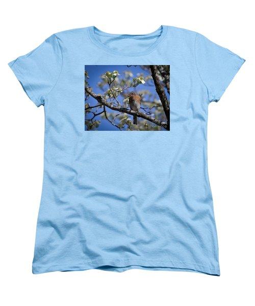 Nest Building Women's T-Shirt (Standard Cut) by Douglas Stucky