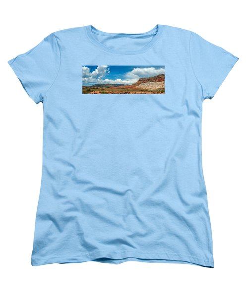 New Mexico Women's T-Shirt (Standard Cut) by Gina Savage