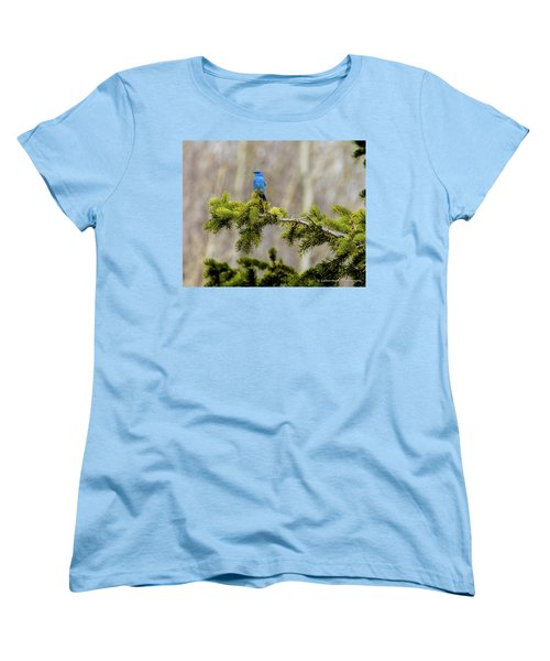Notice The Pretty Bluebird Women's T-Shirt (Standard Cut) by Yeates Photography