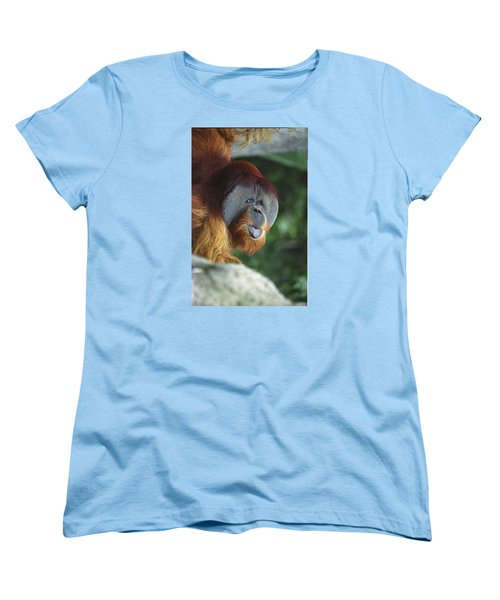 Old Man Of The Forest Women's T-Shirt (Standard Cut) by Greg Slocum