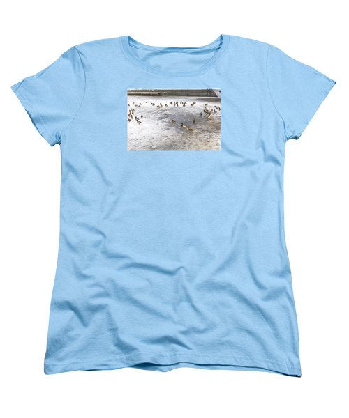 On Ice  Women's T-Shirt (Standard Cut) by Leif Sohlman