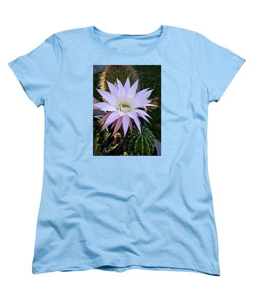 One Day Wonder Women's T-Shirt (Standard Cut) by Amelia Racca