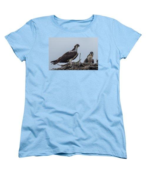 Osprey On A Nest Women's T-Shirt (Standard Cut) by Paul Freidlund