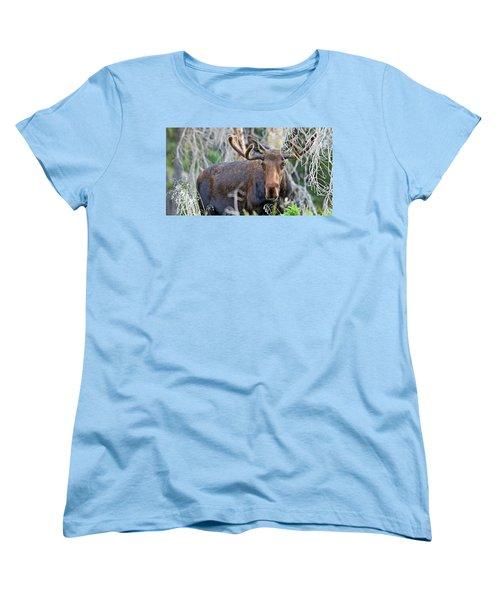 Women's T-Shirt (Standard Cut) featuring the photograph Overlooking Moose by Scott Mahon