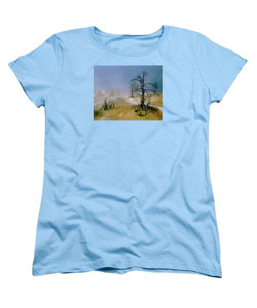 Palette Spring Women's T-Shirt (Standard Cut) by Ed  Riche