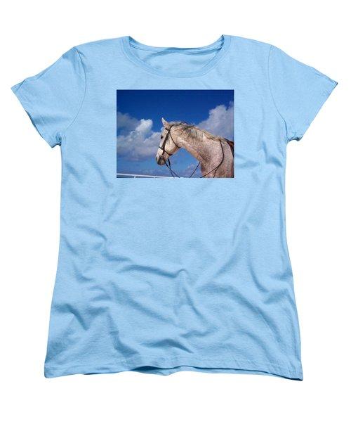 Pancho Women's T-Shirt (Standard Cut) by Mary-Lee Sanders