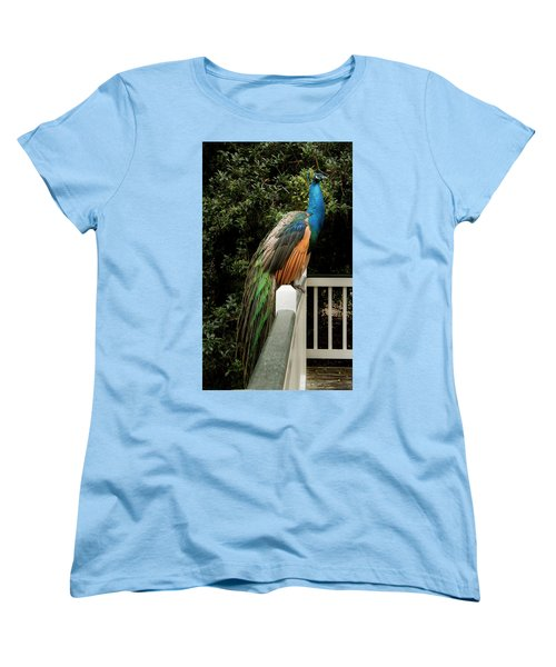 Women's T-Shirt (Standard Cut) featuring the photograph Peacock On A Fence by Jean Noren