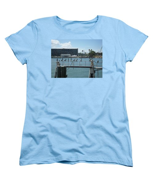 Pelicans In A Row Women's T-Shirt (Standard Cut) by Val Oconnor