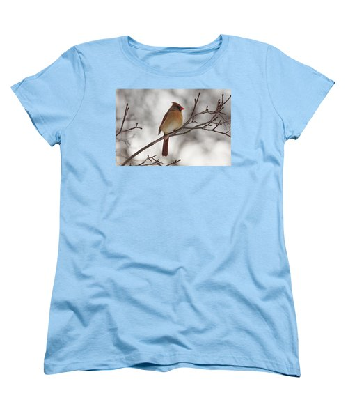 Perched Female Red Cardinal Women's T-Shirt (Standard Cut) by Debbie Oppermann